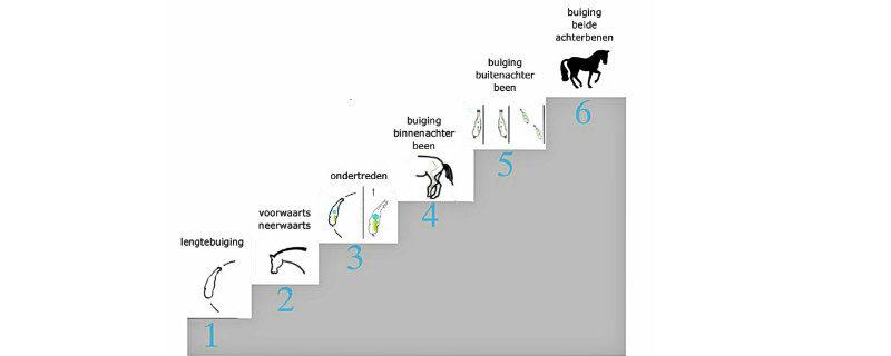 de-6-stappen-van-het-rechtrichten-141-w800