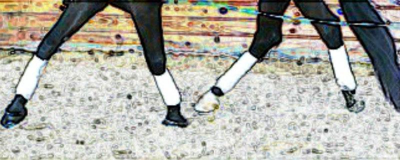 ondertreden-van-het-achterbeen-215-w800